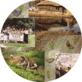 EcoVilla-Gaia